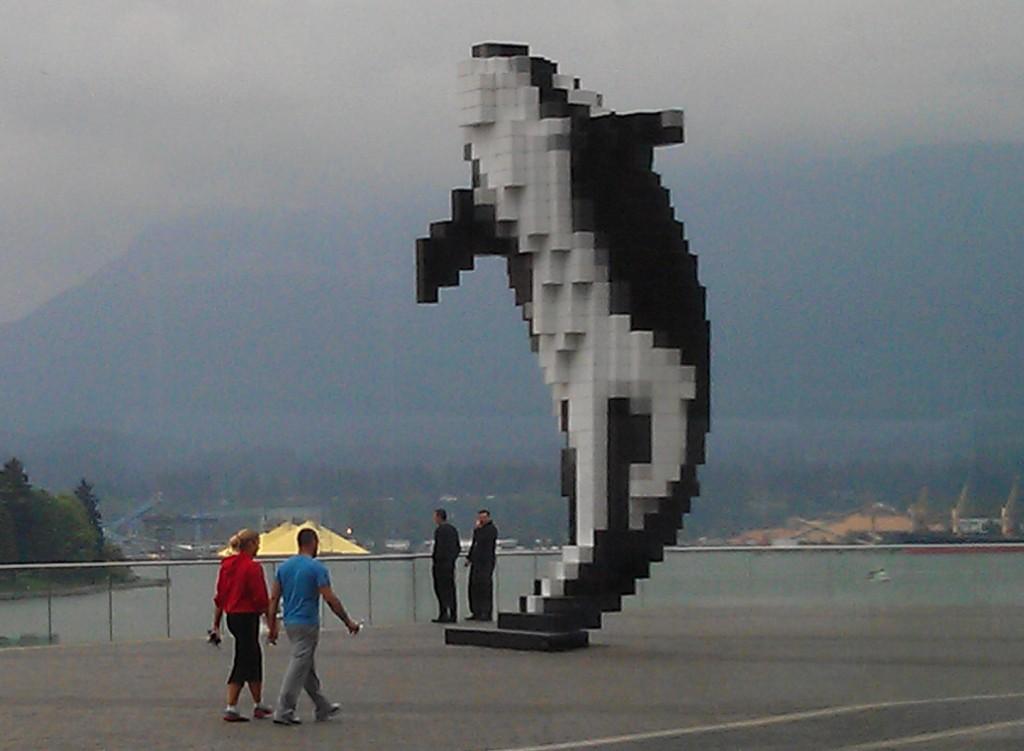 NAFSA Orca