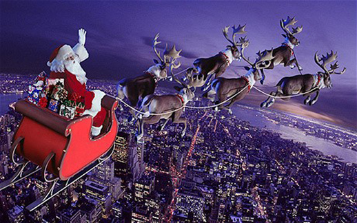 On Call in Action: Grandma's Unfortunate Encounter with Santa's Reindeer