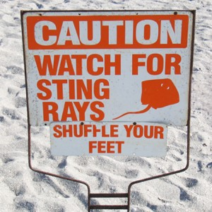 Stingray warning sign
