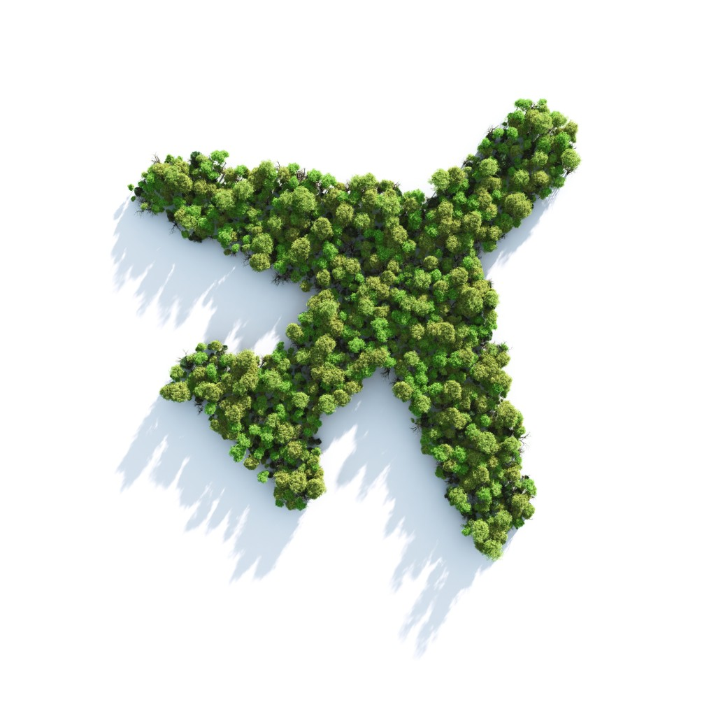 Go Green: 5 Tips for More Sustainable Employee Travel