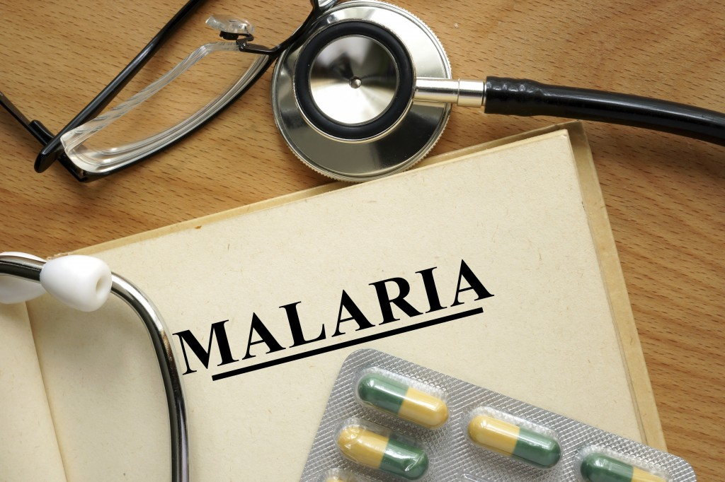 Malaria and Travel: Are You at Risk?