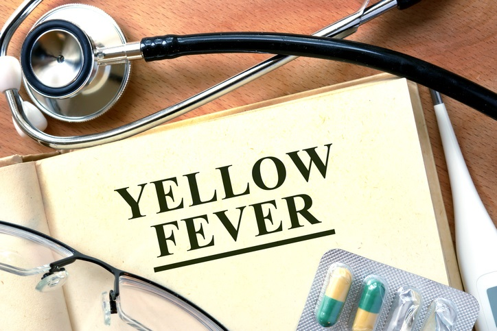 Word Yellow Fever  on a book and pills.
