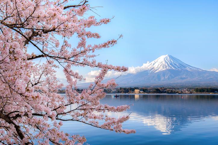 Study Abroad Etiquette: Japan